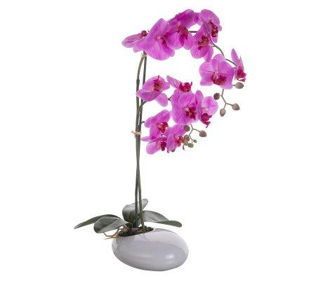 Orchidée artificielle fuchsia au toucher réel dans son pot céramique H 60cm