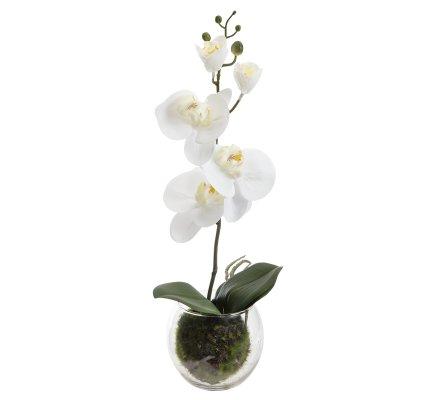 Orchidée artificielle blanche au toucher réel dans un pot en verre H40cm
