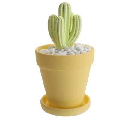 Diffuseur de parfum cactus citron verveine 100ml