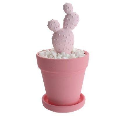 Diffuseur de parfum cactus fleur de printemps 100ml