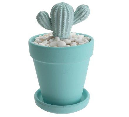 Diffuseur de parfum cactus coco vanille 100ml