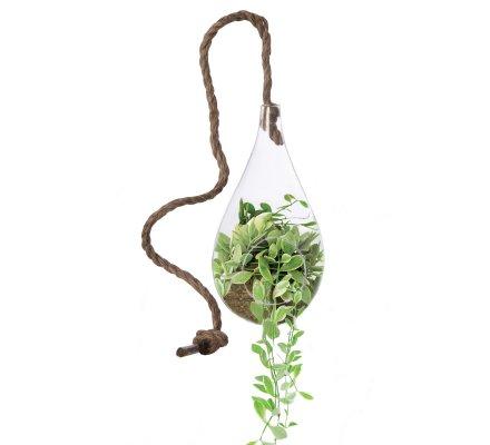 Vase suspendu, terrarium forme goutte avec corde (h)20x(d)10cm
