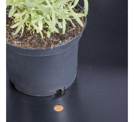 Petite serre en métal sur pied, bâche souple avecouverture à glissières 152x60x60cm