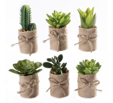 Lot de 6 petites plantes grasses artificielles avec pot en toile de jute 12cm